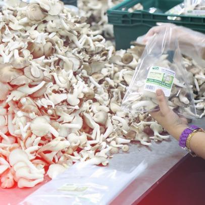 fresh-mushroom